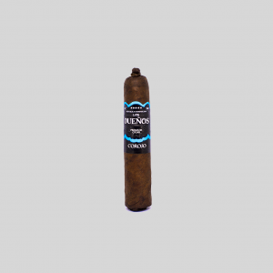 SHORT ROBUSTO COROJO
